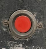 Screenplay: The Purple Button