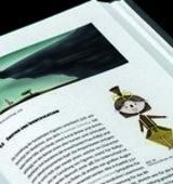 Das Bilderbuch: Illustrierte Manipulation | Masterthesis