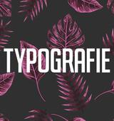 I bims, das Typografie Buch